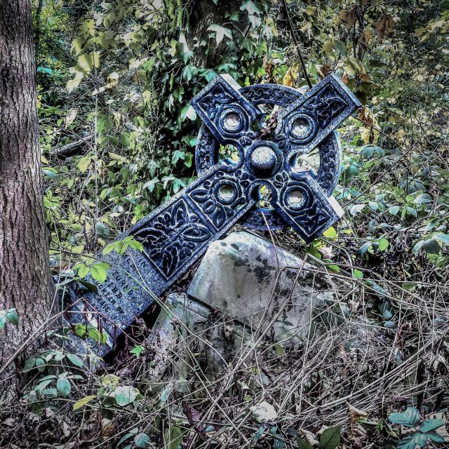 """""""Fallen But Not Forgotten"""" stock image"""