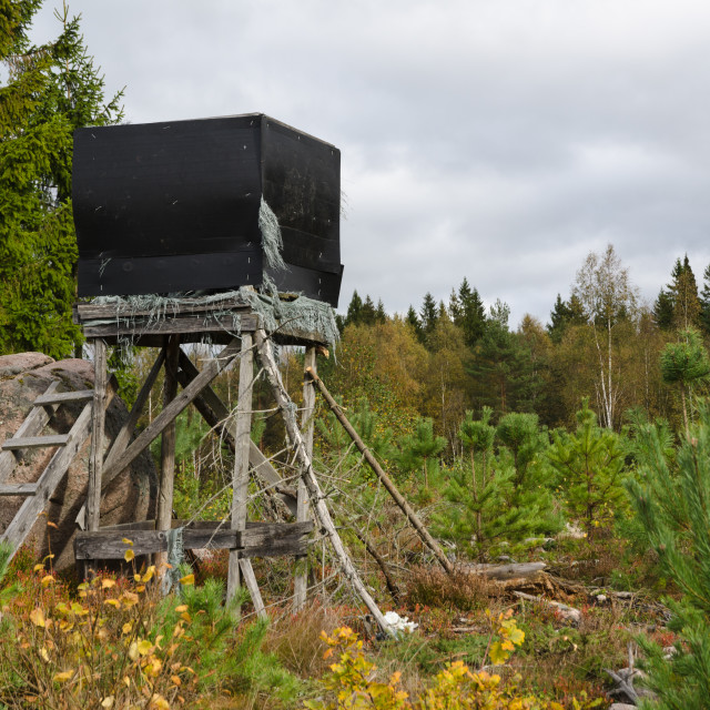 """""""Weathered hunting tower"""" stock image"""