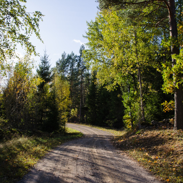 """""""Winding colorful country road"""" stock image"""