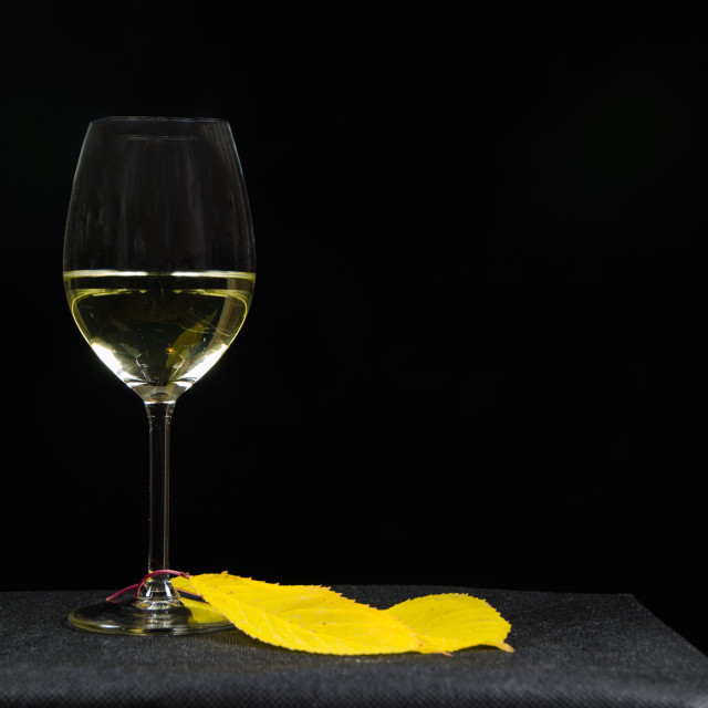 """""""Glass of white wine at black background"""" stock image"""