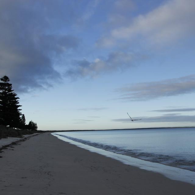 """Beach at dusk"" stock image"