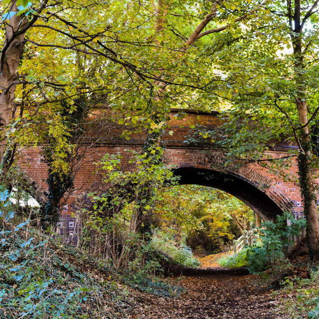 """Autumn Railway Walk"" stock image"