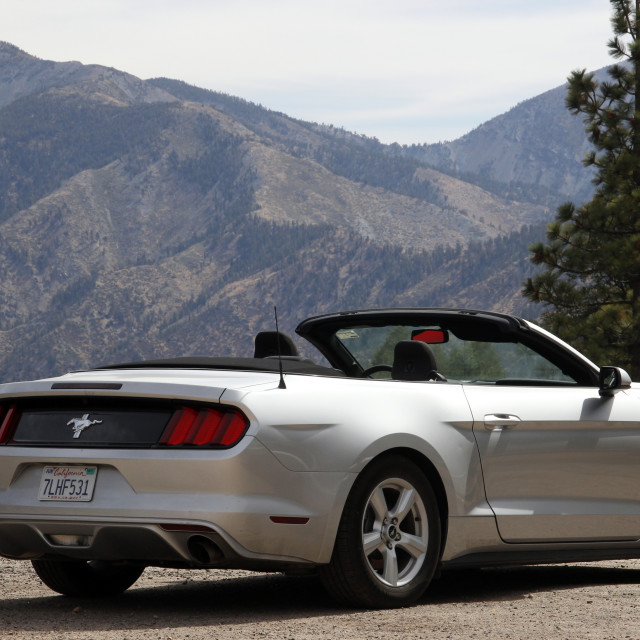 """""""Ford Mustang"""" stock image"""