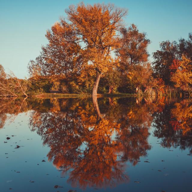 """Autumn reflection vol.3"" stock image"