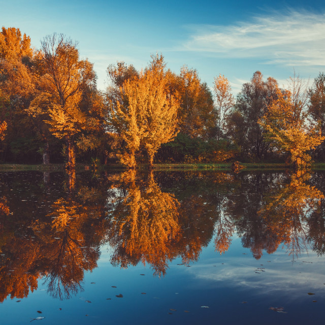 """Autumn reflection vol.2"" stock image"
