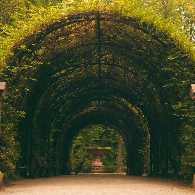 """Tunnel In Parc de l'Orangerie"" stock image"