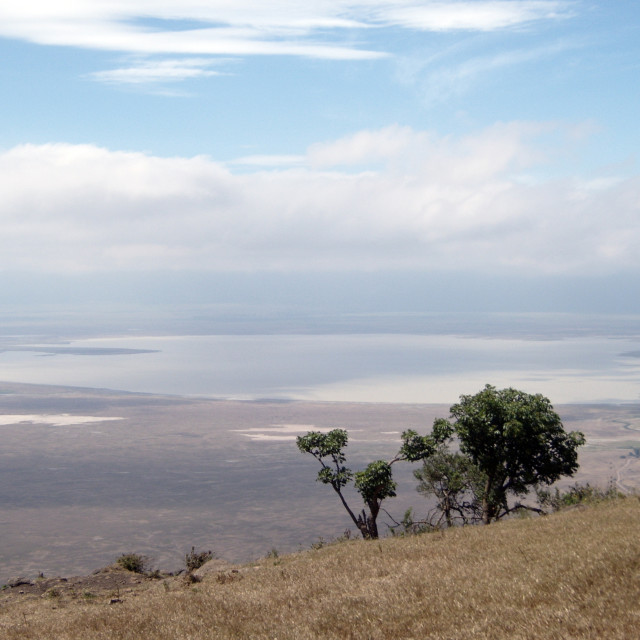 """Ngorongoro Crater"" stock image"