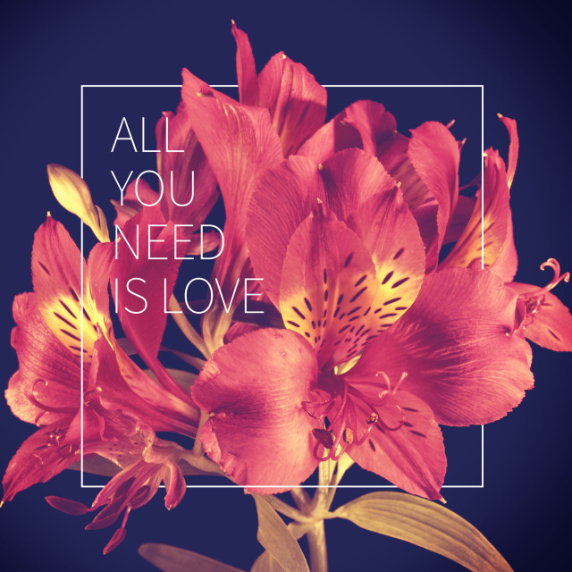 """""""Love quote vintage flower background"""" stock image"""