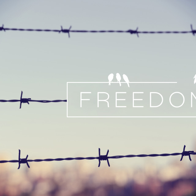 """""""Freedom quote concept barbed wire background"""" stock image"""