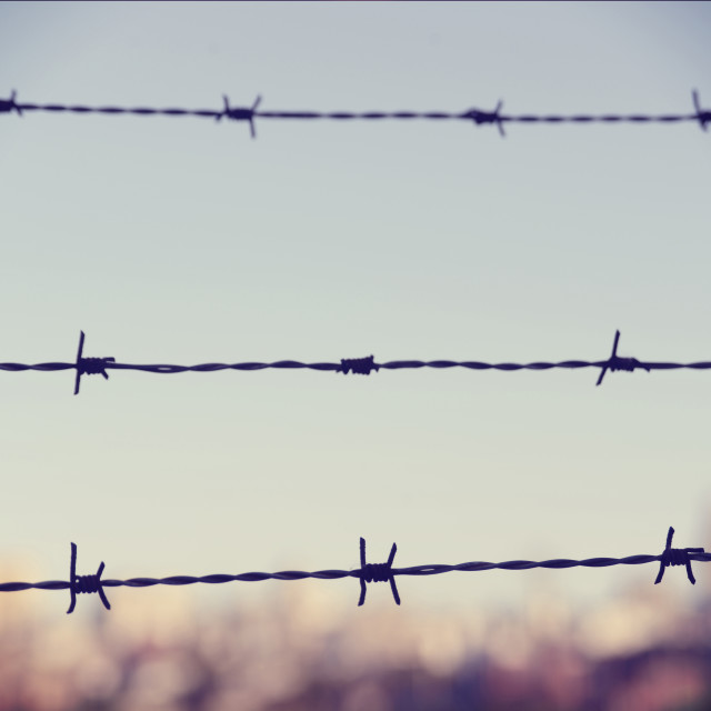 """Freedom concept: barbed wire closeup vintage blur background"" stock image"