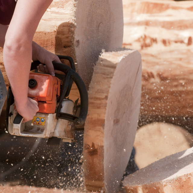 """""""Chainsaw competition"""" stock image"""
