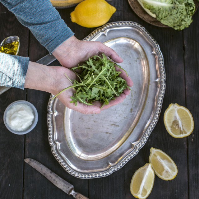 """Preparing salad of arugula."" stock image"