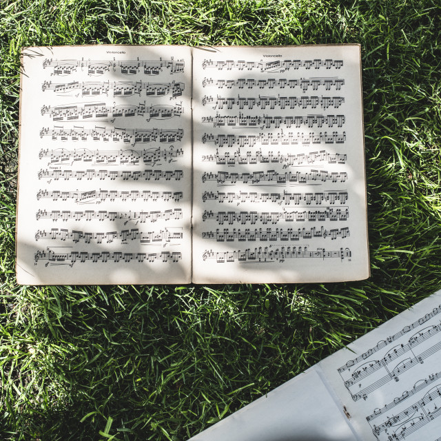 """Music book with notes on grass"" stock image"