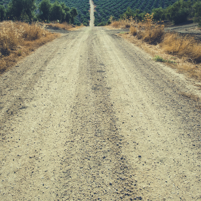 """Vintage dirt road"" stock image"