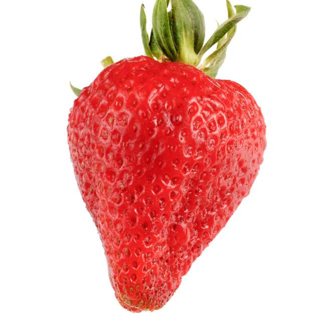 """Fresh ripe strawberry"" stock image"