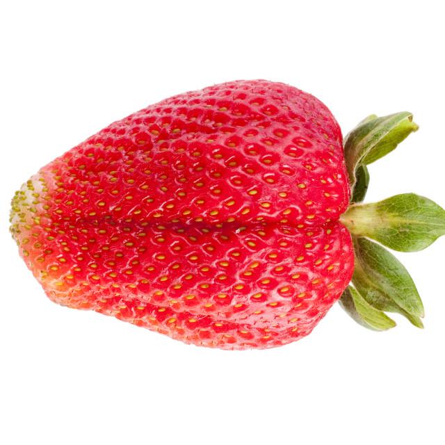 """Solitary isolated fresh ripe strawberry"" stock image"