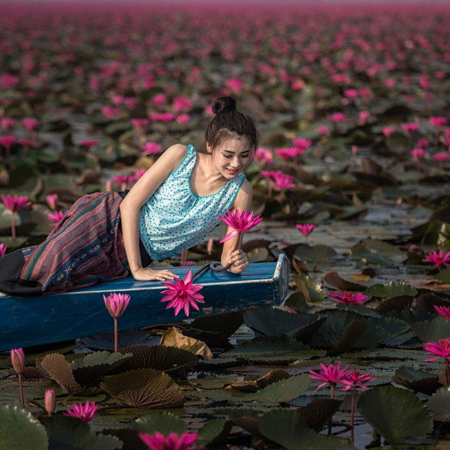 """Beautiful girl on boat in the lotus field."" stock image"