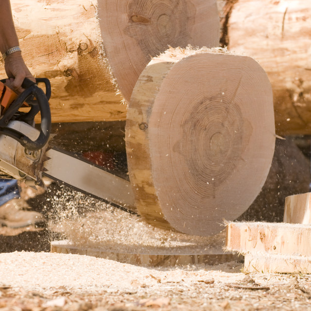 """Chainsaw cutting through log"" stock image"