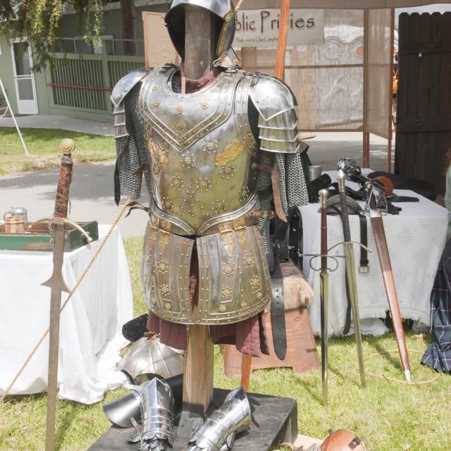 """armor"" stock image"