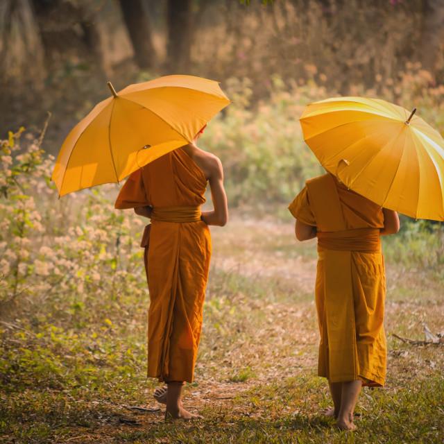 """Buddhism neophyte"" stock image"
