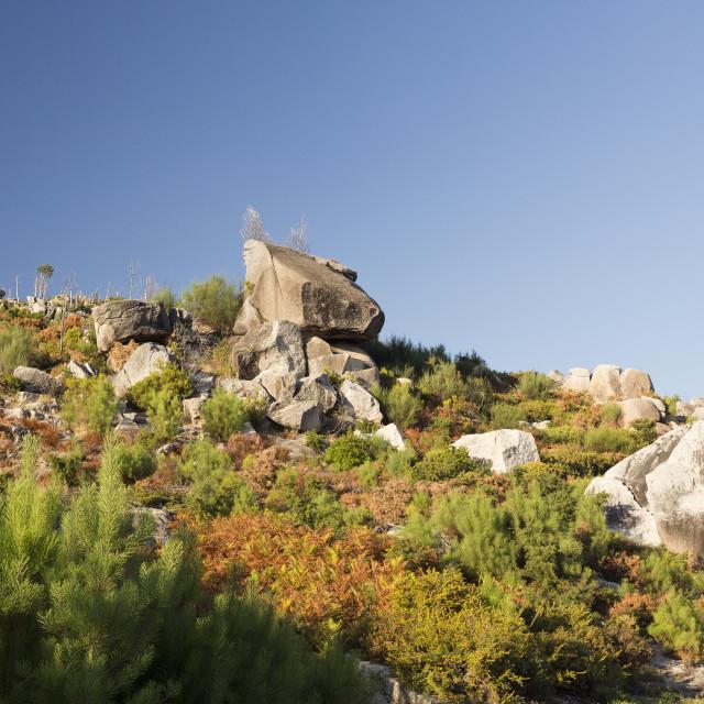 """""""Peneda-Geres Landscapes"""" stock image"""