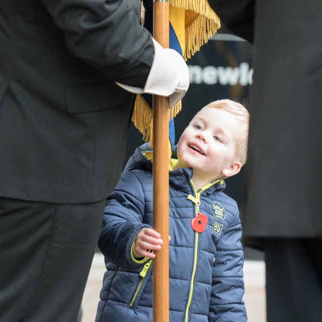 """""""Poppy Appeal Launch, Brentwood, Essex"""" stock image"""