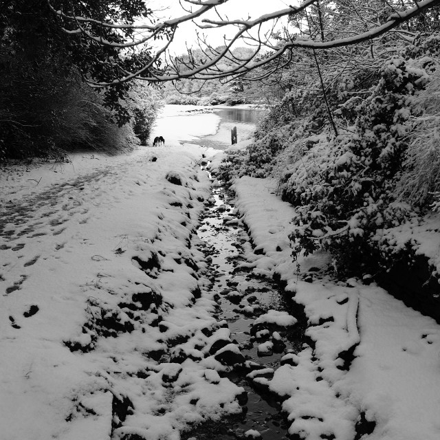 """""""Snowy river"""" stock image"""