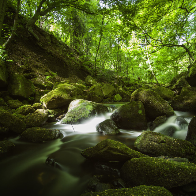 """""""Stream flowing over moss covered rocks"""" stock image"""