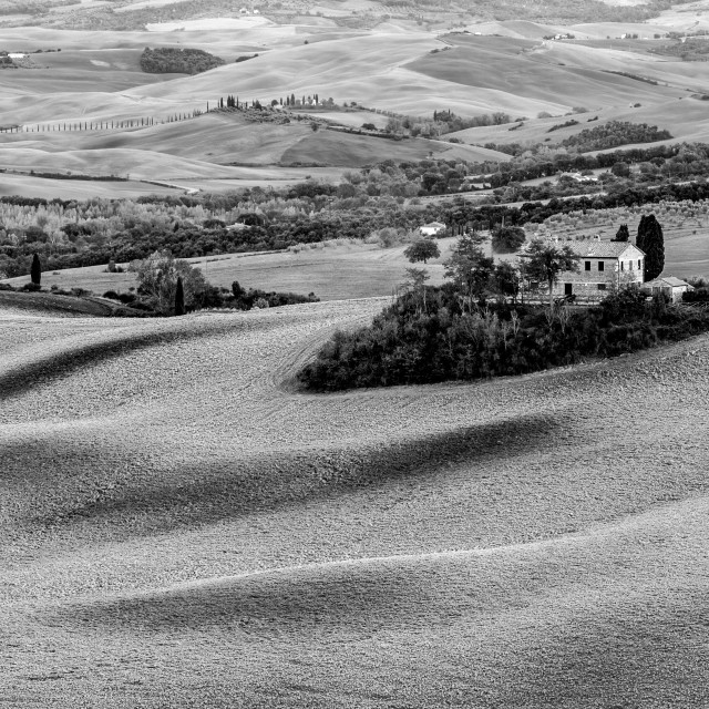 """Plowed Tuscan Romance"" stock image"