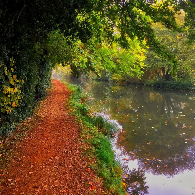 """""""Autumn on the Kennet and Avon Canal"""" stock image"""