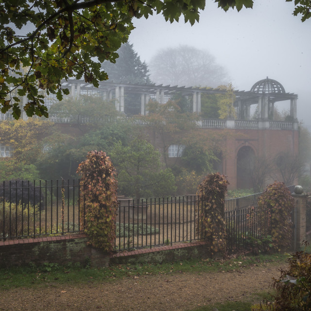 """""""Fog at the Hill Garden"""" stock image"""