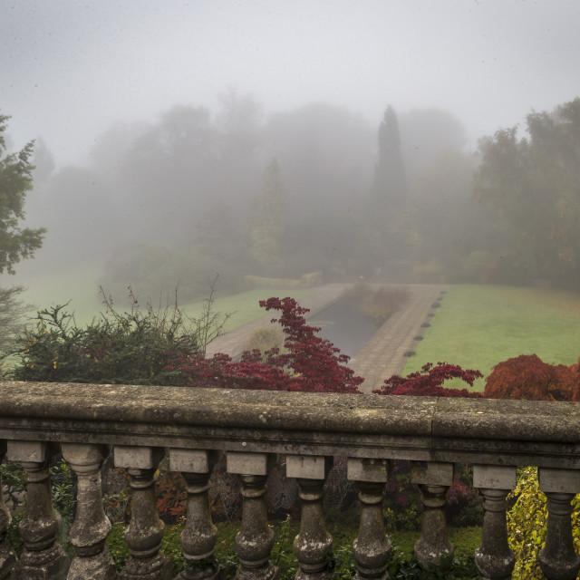 """Thick Fog Over the Pergola"" stock image"