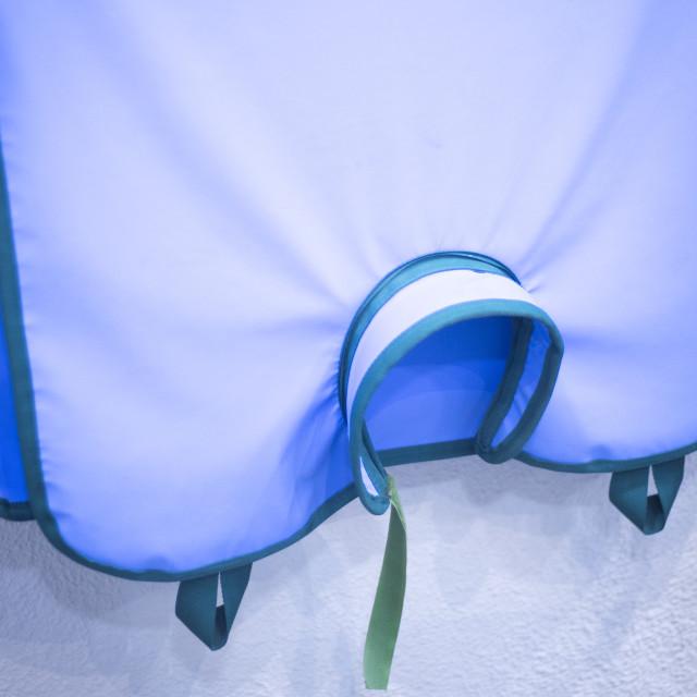 """Dentists xray dental equipment"" stock image"