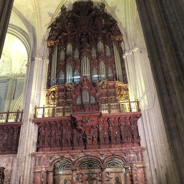 """Cathedral Organ"" stock image"