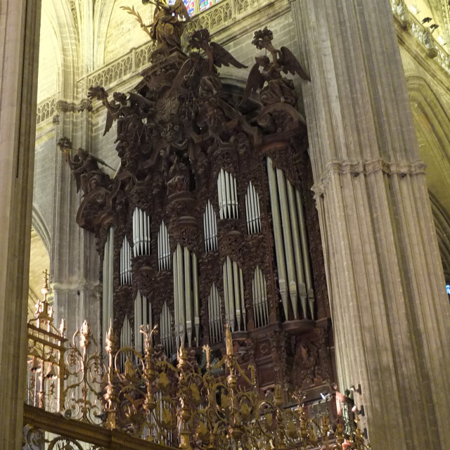 """""""Cathedral Organ Side View"""" stock image"""