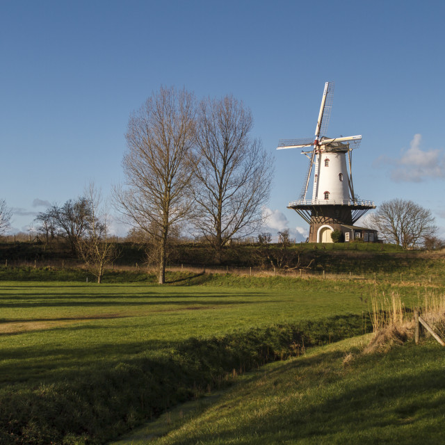 """""""White windmill in Veere 3"""" stock image"""