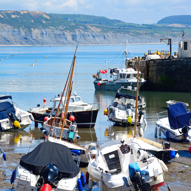 """Lyme Regis harbour, Dorset, UK"" stock image"