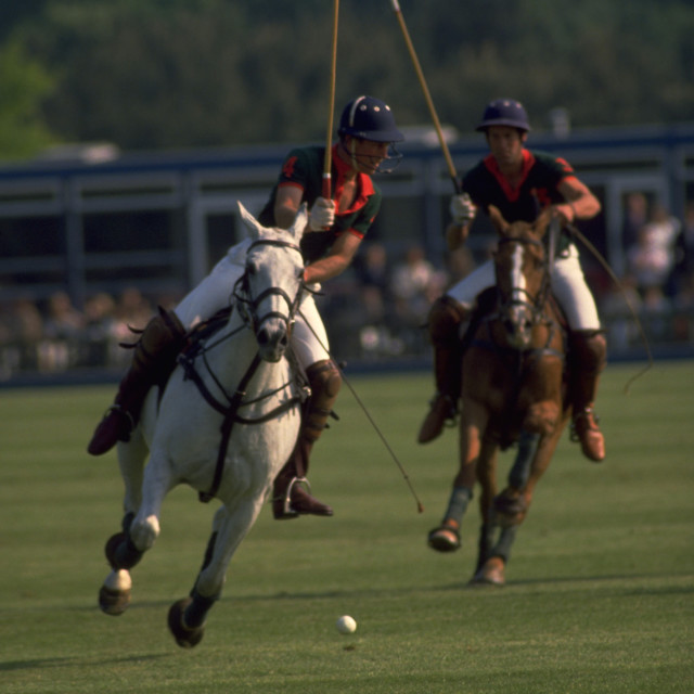 """Prince Charles Playing Polo"" stock image"