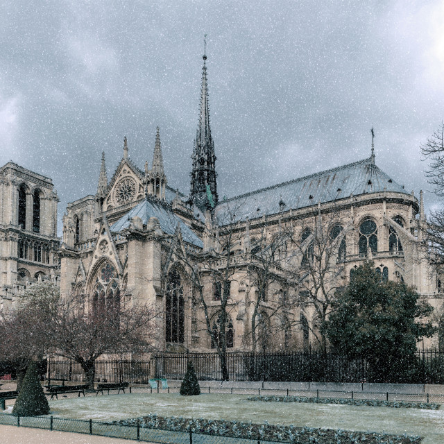 """""""Notre Dame de Paris Cathedral"""" stock image"""