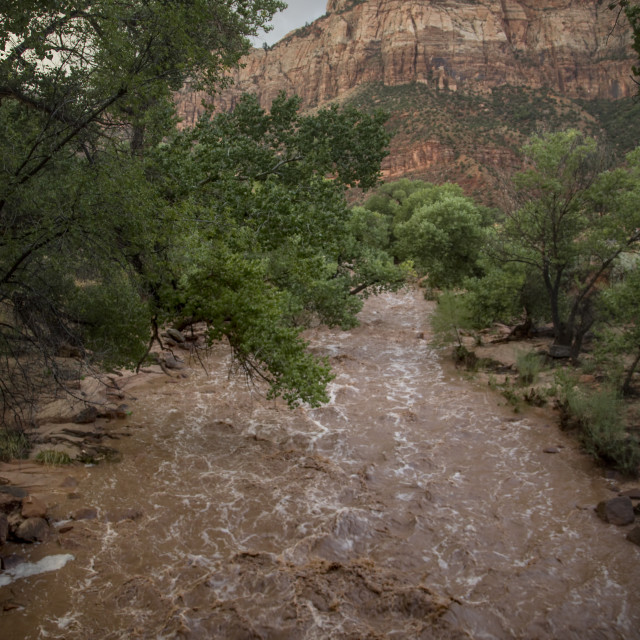 """Zion's Virgin River"" stock image"