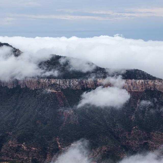 """""""Grand Canyon Fog"""" stock image"""