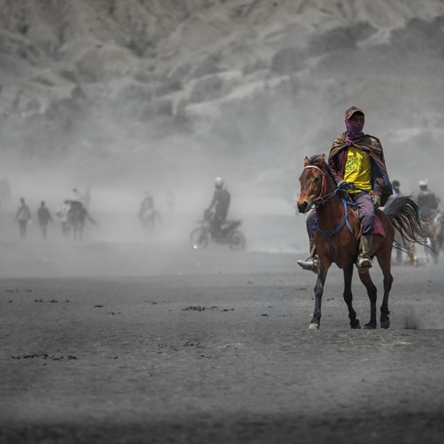 """Horseman"" stock image"