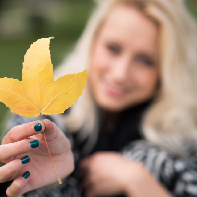 """""""yellow leaf in hand"""" stock image"""