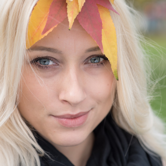 """""""cute blond with hair full of autumn color leafs"""" stock image"""