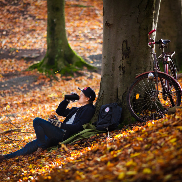 """Autumn Break"" stock image"