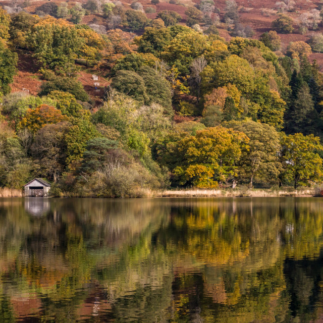 """Rydal Water Boathouse Autumn Reflections"" stock image"