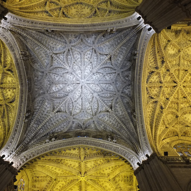 """""""Cathedral Roof"""" stock image"""