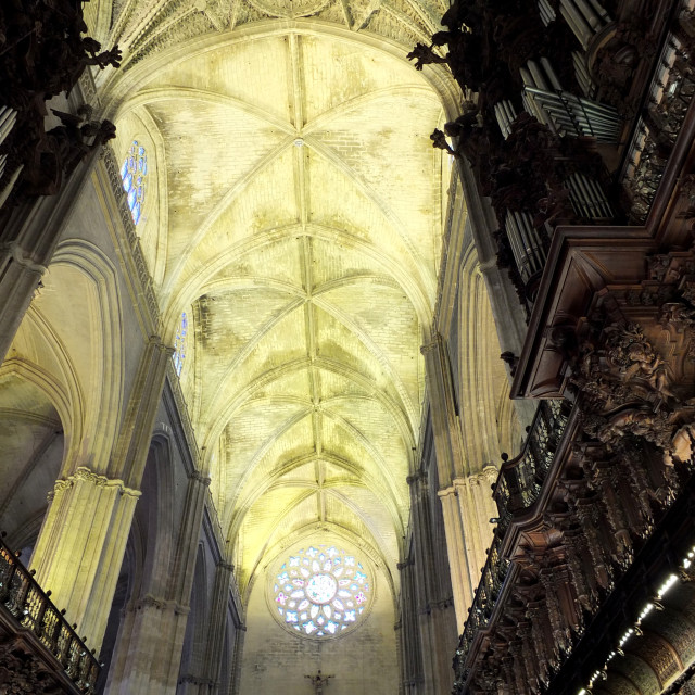 """""""Cathedral Ceiling Detail"""" stock image"""