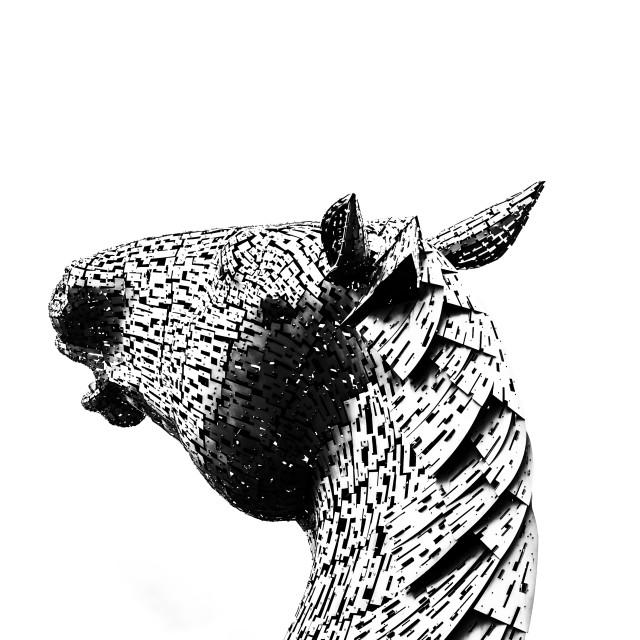 """Horse Head."" stock image"