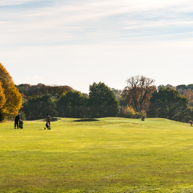 """""""Golf in the Autumn"""" stock image"""